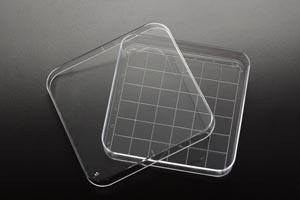 Petri Dish, 15 x 90 x 90mm, 10/slv, 50 slv/cs