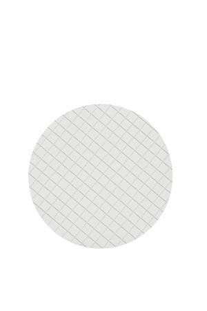 Cytiva 10406970 Membrane Filtration, ME24/21 (Mixed Cellulose Ester), 47mm Dia, 0.2µm, White, 3.1mm/ Black Grid, Sterile, 100/pk